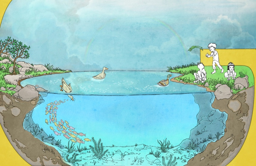pond page2