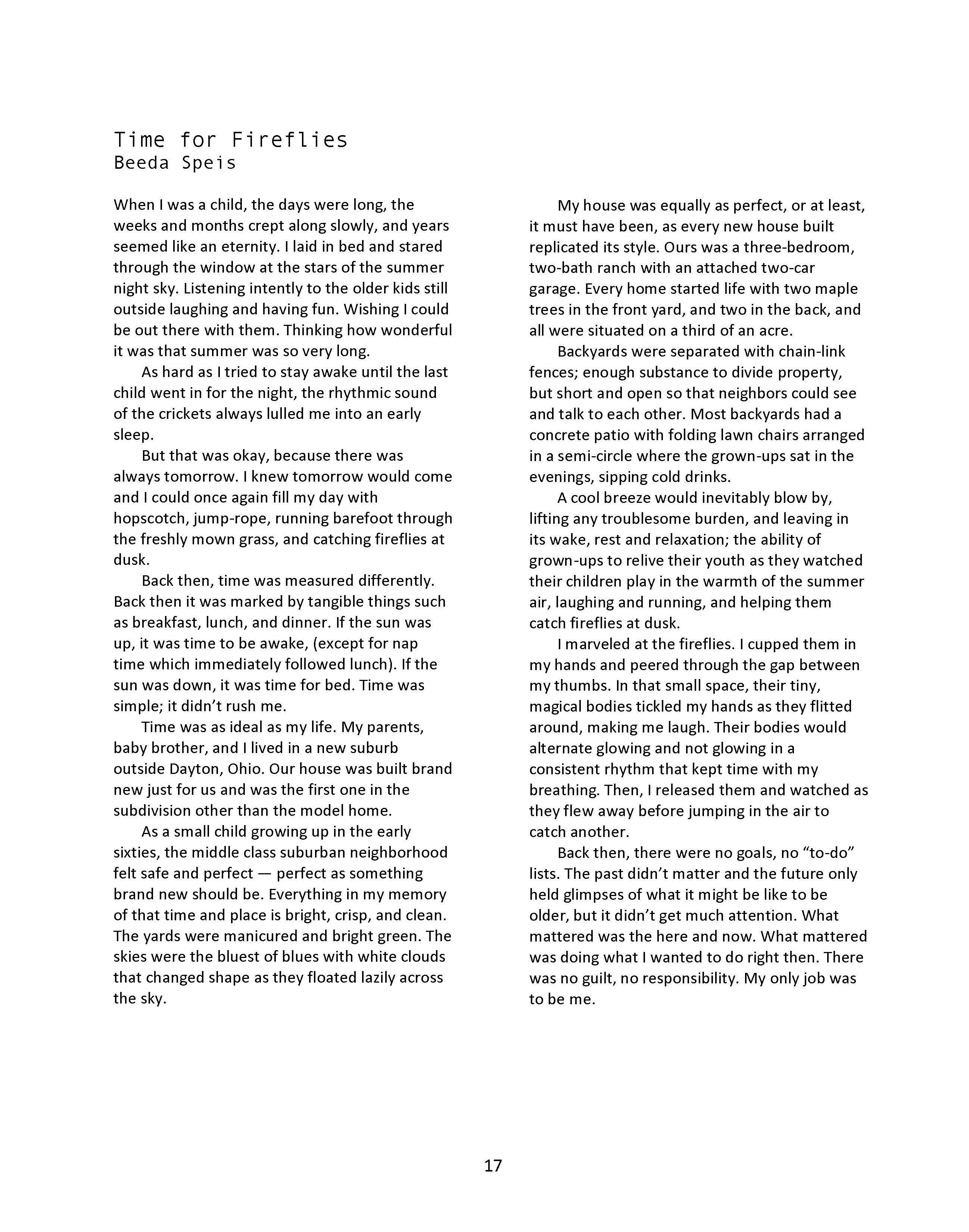 issue 15 summer 2017 mock turtle zine